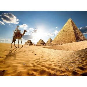 Решение принято, отменяем! Египет отменит визовые сборы с туристов до октября