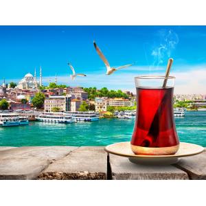 Турция отменяет заселенность в отелях до 50%